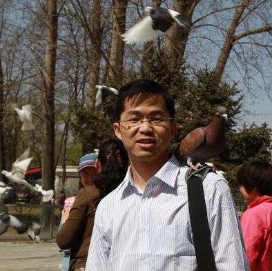 Xu-Pigeon