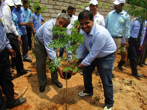 Two team members give water to a freshly planted tree.