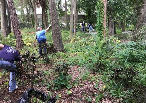 Clearing some overgrowth in the nature-walk area.